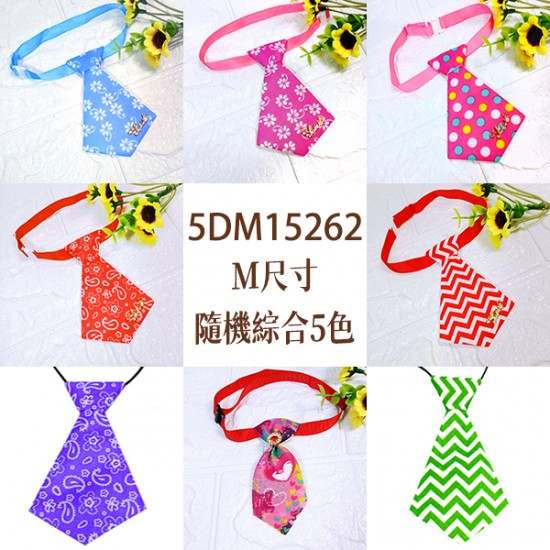 5DM15262 插扣式領帶-5色(M)15入/包